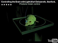 Optogenetics: Controlling the Brain with Light